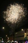 eltham lights up 2012_0039